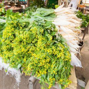 Ряпата дайкон – чудесен източник на витамин С и фибри