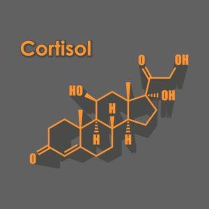 6 стъпки да контролираме нивата на кортизола и да намалим стреса